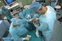 фиксация аутотрансплантата передней крестообразной связки винтом