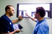 Заведующий отделением Павел Жадан и его заместитель Волобуев Дмитрий анализируют рентгенограммы