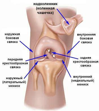 Крестообразной связки коленного сустава как снять опухоль с сустава пальца